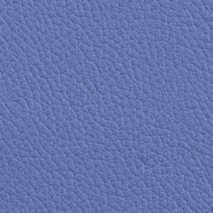 Vista, Blue