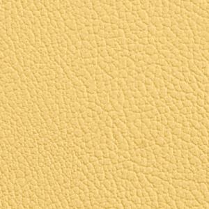 Vista, Buttercup