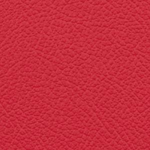 Vista, Cardinal