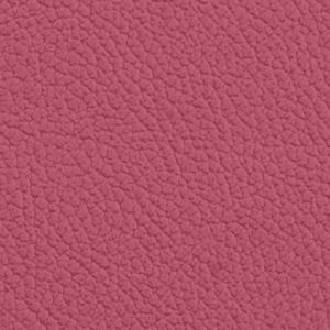 Vista, Hibiscus