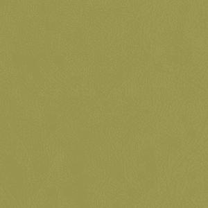 Crypton Revl, Lichen