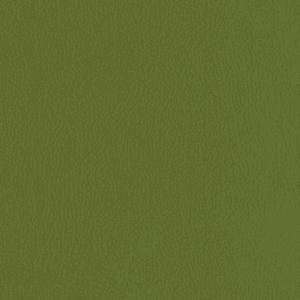 Crypton Revl, Moss