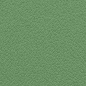 Vista, Key Lime