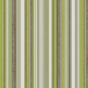 Ackley Stripe, Lime