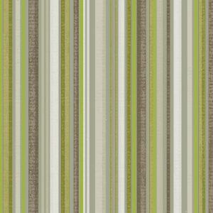 Ackley Stripe, Lime