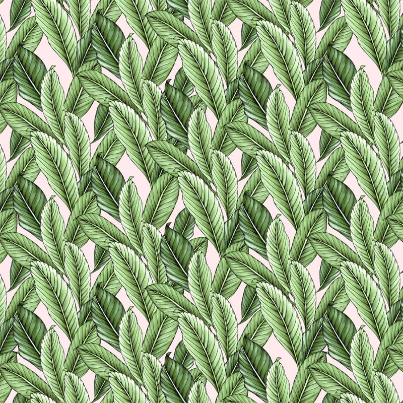 Tropical Leaves Mini in 'Lolly Pink', Typoflora