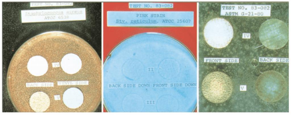 wall vinyl mildew tests