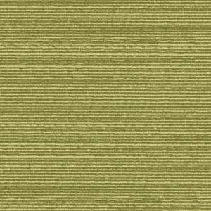 Live Wire, Celery