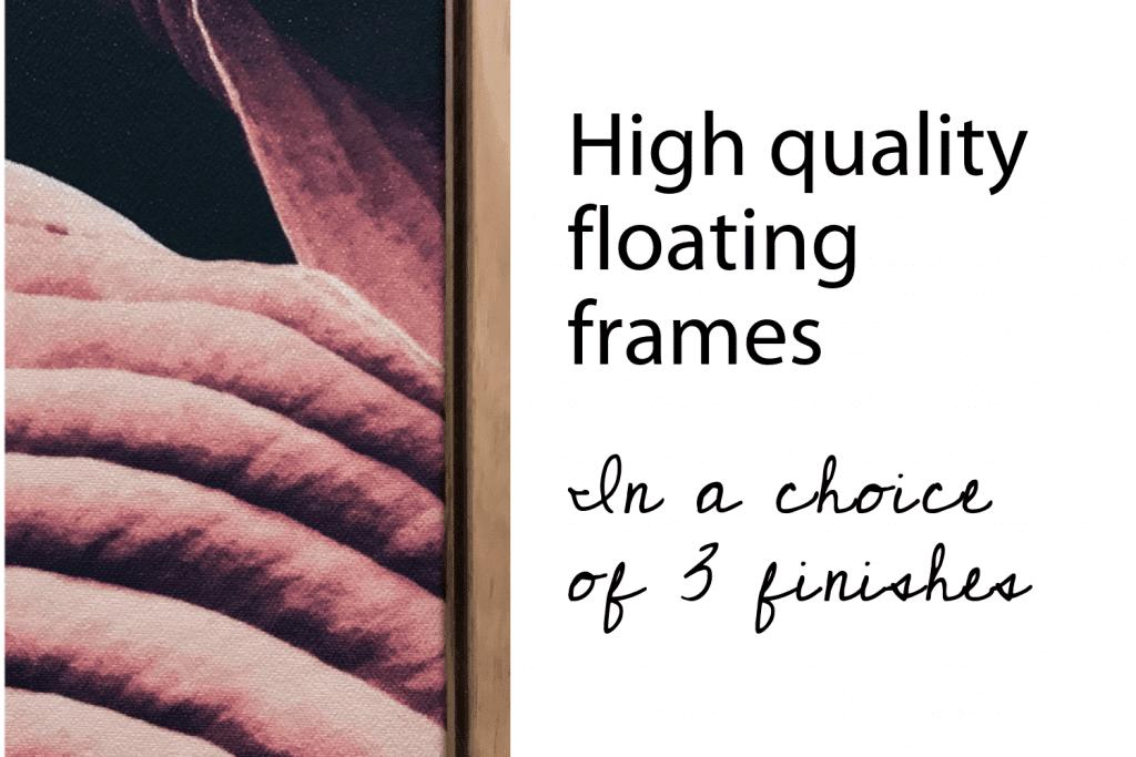 Shadow frame, floating frame