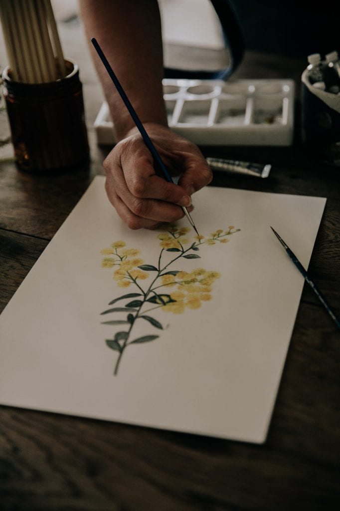 painting of wattle