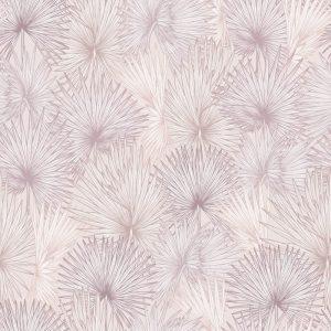 Nobilis Palm, Blushing