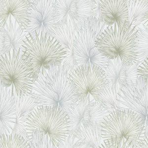 Nobilis Palm, Flourish