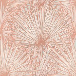 Nobilis Palm Grande, Radiant
