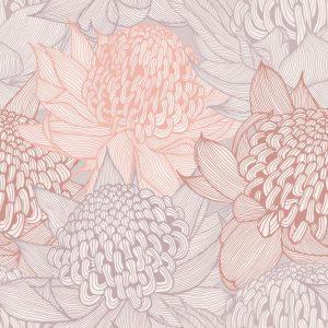 Telopea Bloom, Blushing
